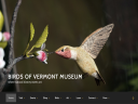 Birds of Vermont Museum image