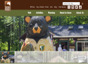 Bear Brook State Park image