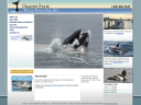 Granite State Whale Watch image